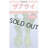 野菜種  中国野菜  ザアサイ 5ml   カネコ種苗株式会社