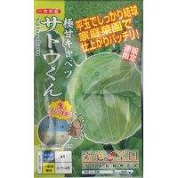 野菜種 キャベツ 極甘キャベツ サトウくん 40粒 ナント種苗