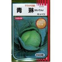 野菜種 キャベツ 青琳 2000粒 サカタのタネ