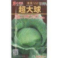 野菜種 キャベツ 超大球 1ml トキタ種苗