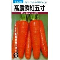 野菜種 人参 高農鮮紅五寸 20ml タカヤマシード