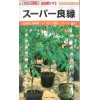 野菜種  台木用トマト スーパー良縁  100粒  カネコ種苗