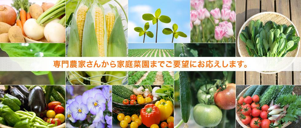 専門農家さんから家庭菜園までご要望にお応えします。