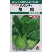 [中国野菜] チンゲンサイ 長陽 3ml タキイ交配