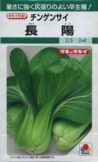 [中国野菜] チンゲンサイ 長陽 3ml タキイ交配 GF