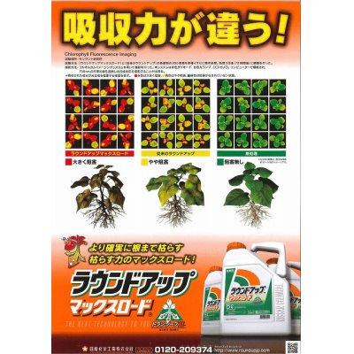 画像2: 農薬 除草剤 ラウンドアップマックスロード 5.5L