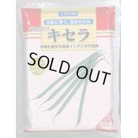 [いんげん] ベストクロップキセラ 2000粒 雪印種苗