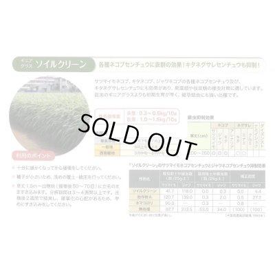 画像5: 緑肥 ソイルクリーン 1kg 雪印種苗株式会社