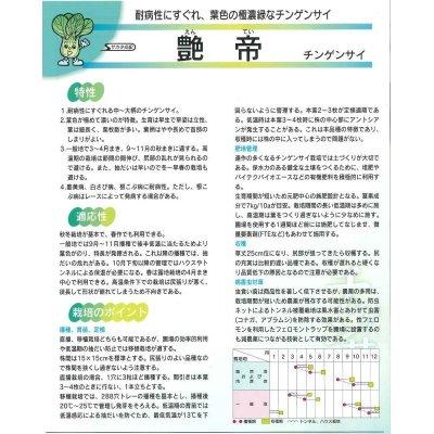 画像2: [中国野菜] 送料無料! チンゲンサイ 艶帝 2dl  サカタ交配