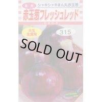 送料無料  たまねぎ 赤玉葱 フレッシュレッド 4ml 松永種苗