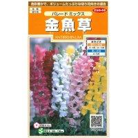 [花種/小袋] 金魚草 パレードミックス0.1ml サカタのタネ