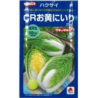[白菜] CRお黄にいり 20ml 貴種(コートしてません) タキイ交配