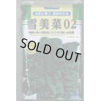 [ほうれんそう] 雪美菜02 3万粒
