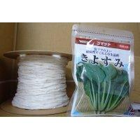 [シーダー種子] 小松菜 きよすみ 1粒×5cm間隔