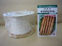 [シーダー種子] ごぼう サラダむすめ (てがるゴボウ) 1粒×5cm間隔