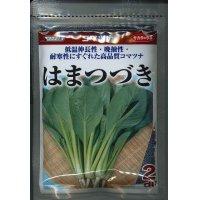 [小松菜] はまつづき 2dl サカタのタネ