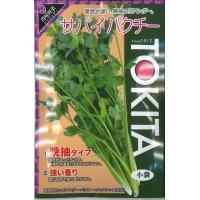 [ハーブの種] コリアンダー サバイパクチー  10ml  トキタ種苗