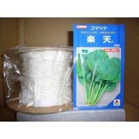 [シーダー種子] 小松菜 楽天 1粒×5cm間隔