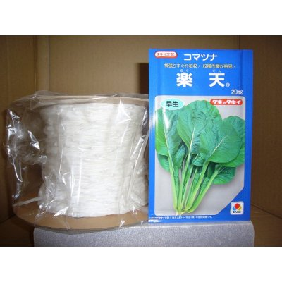 画像1: [シーダー種子] 小松菜 楽天 1粒×5cm間隔