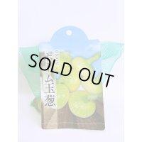 [たまねぎ] ホーム玉葱 250g トキタ種苗