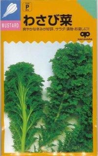 [葉物] わさび菜 6ml 中原採種場