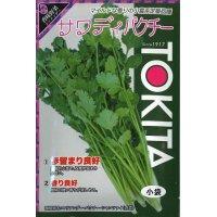 [ハーブの種] コリアンダー サワディ  10ml  トキタ種苗