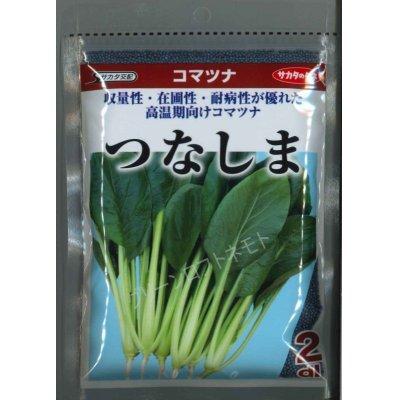 画像1: [小松菜] つなしま  サカタ交配