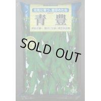 [枝豆] 青豊 1L 雪印種苗