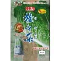 送料無料  白菜 娃々菜 春秋用 1g(約300粒) トキタ種苗