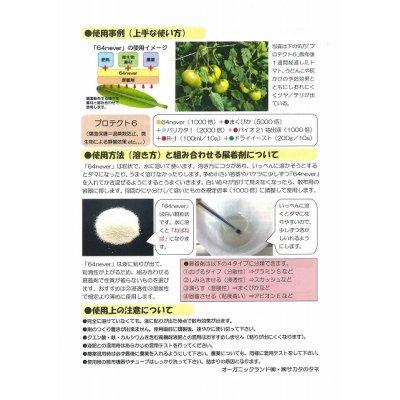画像5: 植物コーティング剤 64never  300g
