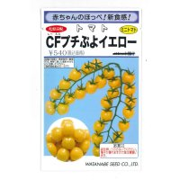 [トマト/ミニトマト] CFプチぷよイエロー  9粒 松島交配