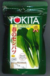 [小松菜] 春のセンバツ 2dl トキタ種苗