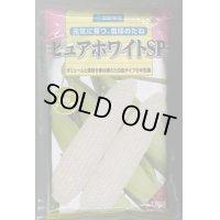 [とうもろこし] ピュアホワイトSP   2000粒 雪印種苗