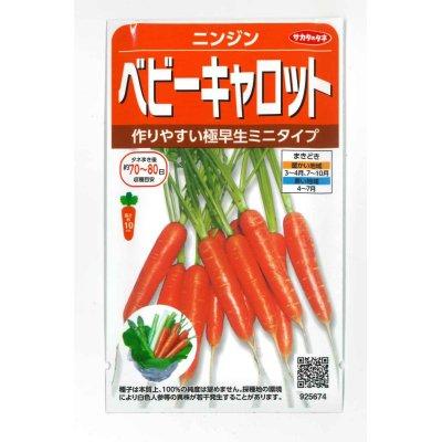 画像1: [人参] ベビーキャロット ミニニンジン  小袋  サカタのタネ実咲