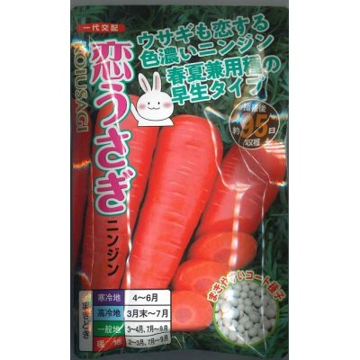 画像1: [人参] 恋うさぎ  250粒 ナント種苗