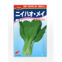 [中国野菜] チンゲンサイ ニイハオ・メイ 2ml 渡辺農事