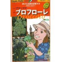 [イタリア野菜] ブロフローレ 50粒  トキタ種苗