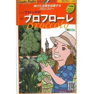画像1: [イタリア野菜] ブロフローレ 50粒  トキタ種苗
