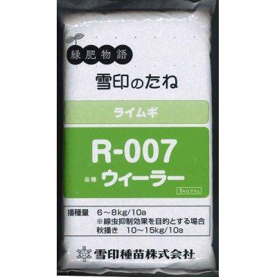 画像1: [緑肥] ライ麦 R-007 1kg  雪印種苗