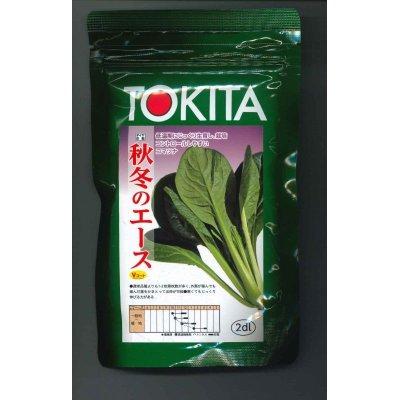 画像1: [小松菜] 秋冬のエース 2dl トキタ種苗