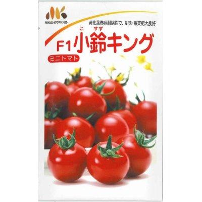 画像1: [トマト/ミニトマト] 小鈴キング  100粒 みかど協和