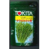 [葉物] サラダからし菜 2dl     トキタ種苗