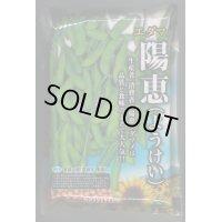 [枝豆] 陽恵 2000粒 カネコ育成