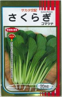 [小松菜] さくらぎ 20ml  サカタ交配