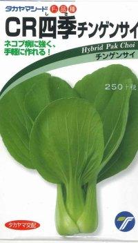 [中国野菜] チンゲンサイ  CR四季チンゲンサイ 2ml  タカヤマシード