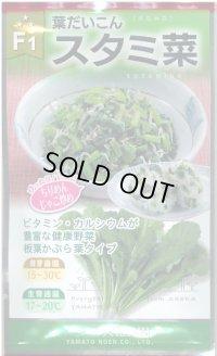 [葉物] 葉だいこん スタミ菜 20ml 大和農園