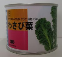 [葉物] わさび菜 2dl   中原採種場
