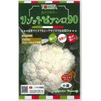 カリフラワー リゾットビアンコ 50粒 トキタ種苗