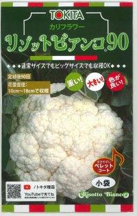 カリフラワー リゾットビアンコ90 50粒 トキタ種苗