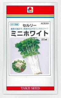 [葉物] セルリー ミニホワイト 20ml タキイ育成